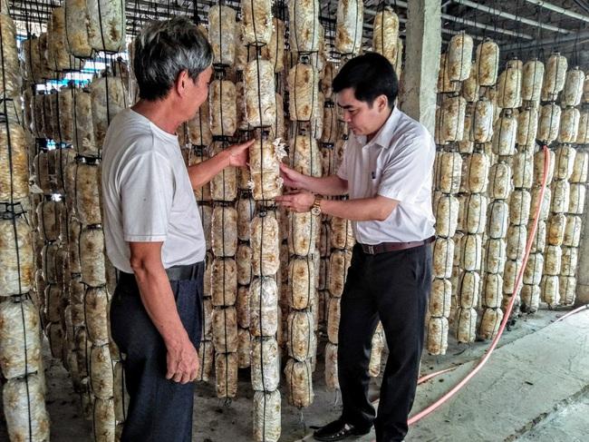 Cựu chiến binh trồng 3 loại nấm, thu nhập 800 triệu đồng mỗi năm   - Ảnh 1.
