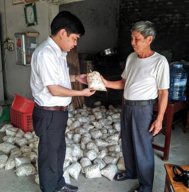 Cựu chiến binh trồng 3 loại nấm, thu nhập 800 triệu đồng mỗi năm   - Ảnh 4.