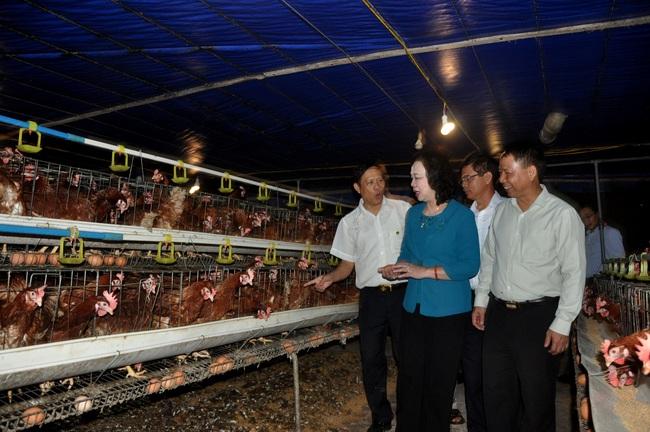 Hà Nội tăng tốc phát triển nông nghiệp - Ảnh 3.