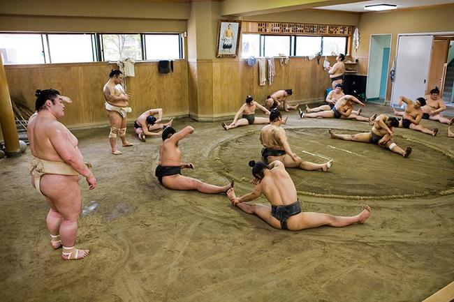 Nhật Bản: Võ sĩ sumo đầu tiên chết vì virus corona   - Ảnh 1.