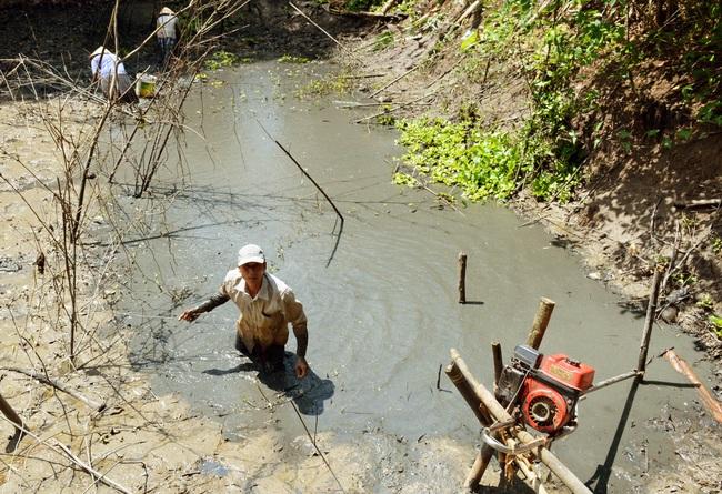 Bắt cá đồng mùa khô nơi đất Mũi  - Ảnh 1.