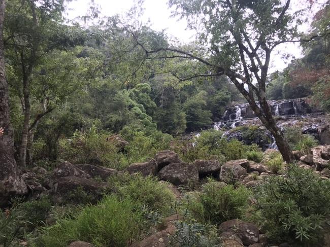 Tuyệt đẹp thác Kon Bông ở Tây Nguyên - Ảnh 5.