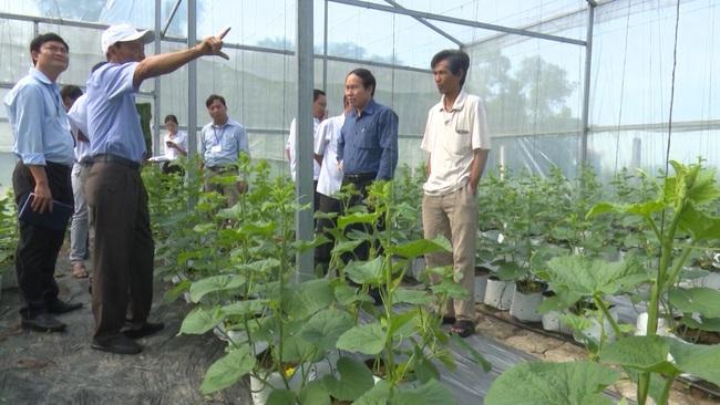 Xây dựng nông thôn mới ở huyện Phụng Hiệp (HậuGiang): Sức bật từ sản xuất nông nghiệp hàng hóa - Ảnh 1.