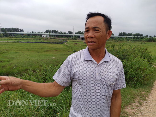 Quảng Ninh: Dân nghèo trồng lúa trên đất bỏ không, chính quyền phạt hàng trăm triệu - Ảnh 3.