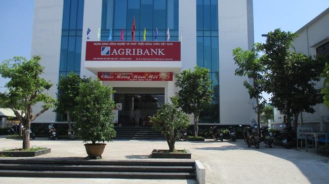 Agribank Đại Lộc (Quảng Nam): Bám sát mục tiêu phát triển để tạo dựng niềm tin với khách hàng - Ảnh 3.