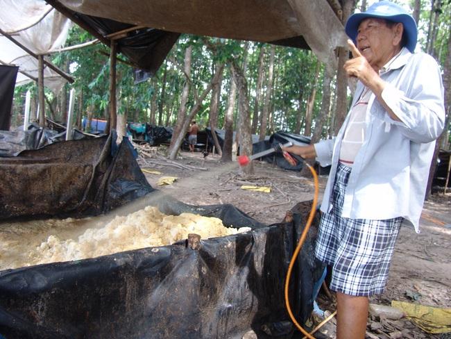 Độc đáo: Nông trại nuôi cá bằng ruồi lính đen đắt đỏ - Ảnh 5.