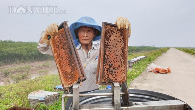 Ninh Bình: U 80 đưa quân đi tìm vị ngọt của biển, kiếm tiền triệu mỗi ngày - Ảnh 1.