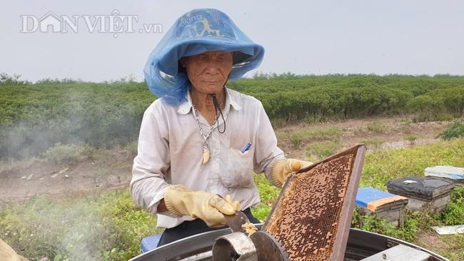 Ninh Bình: U 80 đưa quân đi tìm vị ngọt của biển, kiếm tiền triệu mỗi ngày - Ảnh 3.