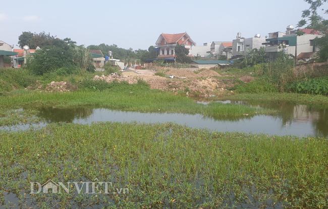 """Huyện làm dự án """"chui"""", xã hứa """"hão"""" khiến nông dân mất đất - Ảnh 2."""