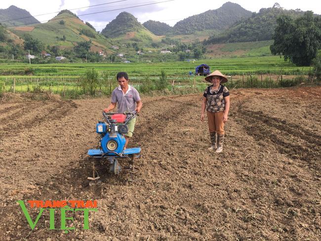 Vân Hồ xây dựng nông thôn mới gắn với phát triển kinh tế - xã hội - Ảnh 1.