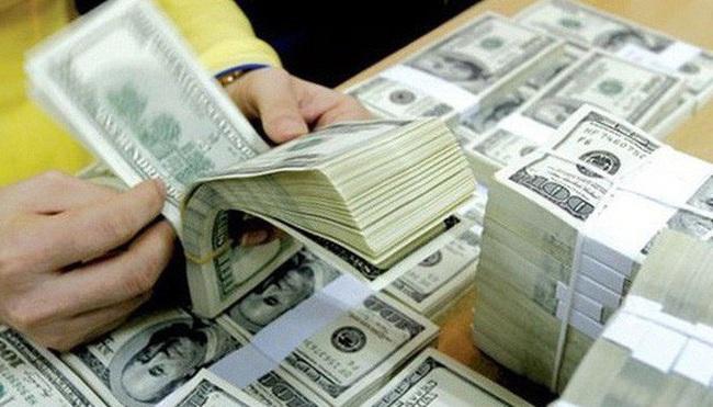 Vốn đầu tư nước ngoài sụt giảm - Ảnh 1.