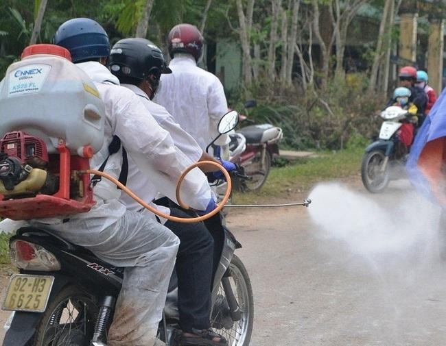 Dịch TLCP ở Quảng Nam: Chỉ còn 25.000 con lợn nái, nguy cơ thiếu hụt lớn - Ảnh 2.