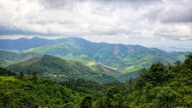 Vingroup đầu tư gần 2.000 tỷ đồng làm khu sinh thái Vinpearl Safari ở Quảng Ninh - Ảnh 1.