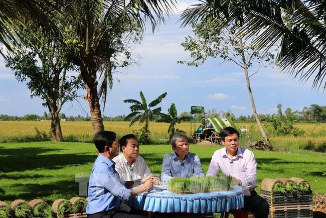 Ứng dụng cơ giới hóa, nhẹ công trồng lúa  - Ảnh 1.