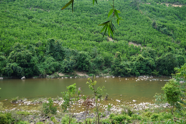 Đà Nẵng: Khôi phục nghề dệt thổ cẩm Cơ Tu gắn với phát triển du lịch homestay - Ảnh 3.