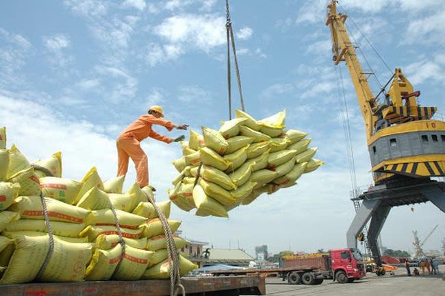 """Xuất khẩu gạo """"đón sóng"""" EVFTA - Ảnh 1."""