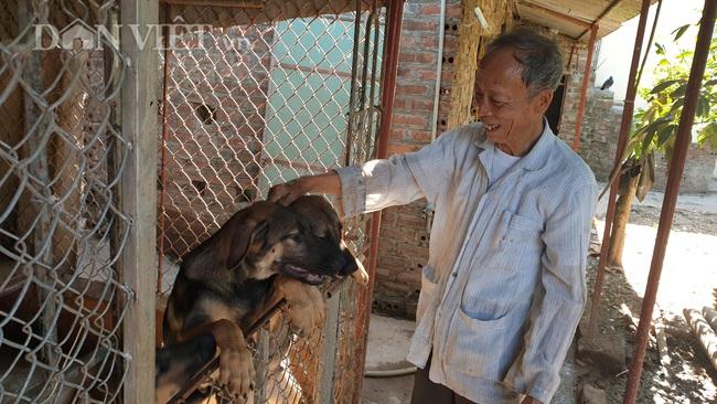 Thái Bình: Thương binh cụt 1 chân, 85 tuổi vẫn miệt mài làm kinh tế - Ảnh 4.