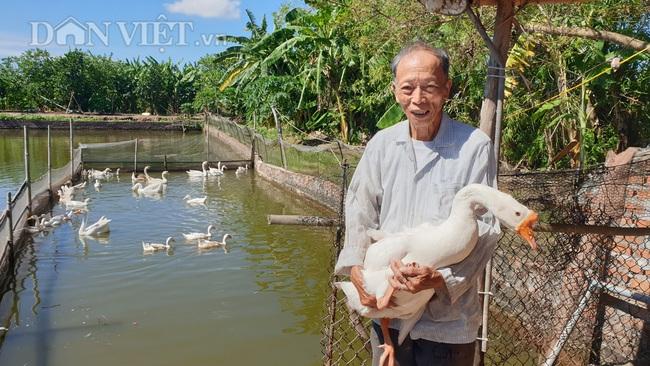 Thái Bình: Thương binh cụt 1 chân, 85 tuổi vẫn miệt mài làm kinh tế - Ảnh 2.