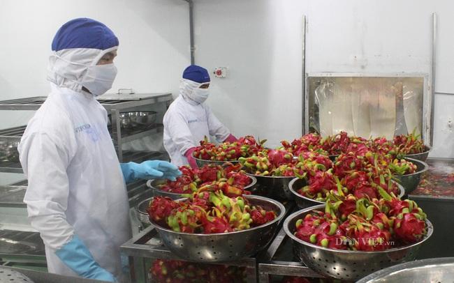 Nông sản Việt và cuộc đua vào thị trường thế giới khoảng 15.000 tỷ USD - Ảnh 1.