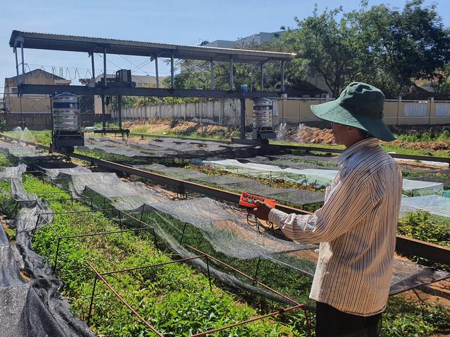 """Đà Nẵng: Độc đáo lão nông làm vườn kiểu """"6 trong 1"""" - Ảnh 1."""