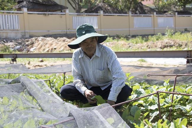 """Đà Nẵng: Độc đáo lão nông làm vườn kiểu """"6 trong 1"""" - Ảnh 3."""
