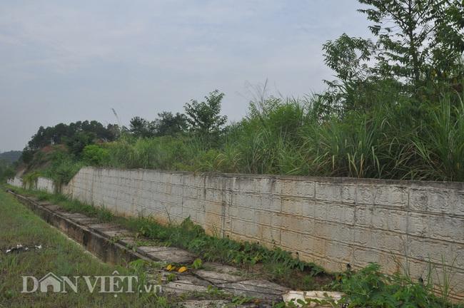 Ảnh: Xanh cỏ dự án Nghìn tỷ ở Yên Bái - Ảnh 6.