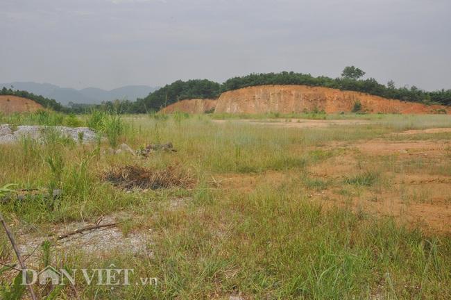 Ảnh: Xanh cỏ dự án Nghìn tỷ ở Yên Bái - Ảnh 7.