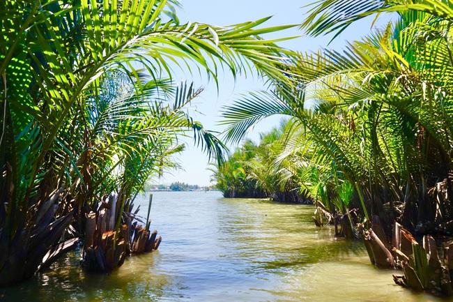 Quảng Nam: Khám phá sông nước miền Tây giữa lòng phố cổ - Ảnh 2.