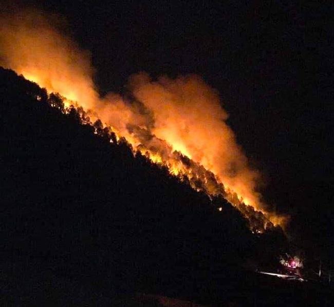 Nghệ An: Trắng đêm khống chế cháy rừng, thiệt hại 4ha    - Ảnh 1.