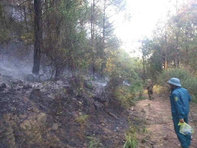 Nghệ An: Trắng đêm khống chế cháy rừng, thiệt hại 4ha    - Ảnh 4.