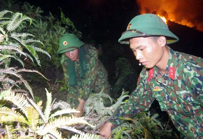Cháy rừng tại Hương Sơn (Hà Tĩnh) được khống chế thế nào? - Ảnh 3.