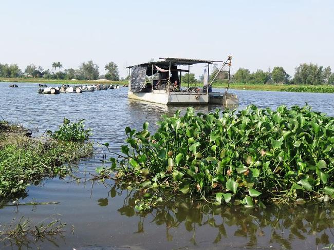 Quảng Nam: Trong tháng 7 sẽ khởi công dự án nạo vét sông Cổ Cò. - Ảnh 1.