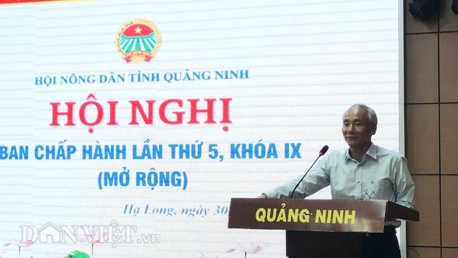 Quảng Ninh: Hội Nông dân tỉnh biểu dương các điển hình tiên tiến - Ảnh 1.