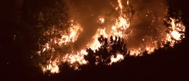 Cháy rừng tại Hương Sơn (Hà Tĩnh) được khống chế thế nào? - Ảnh 2.