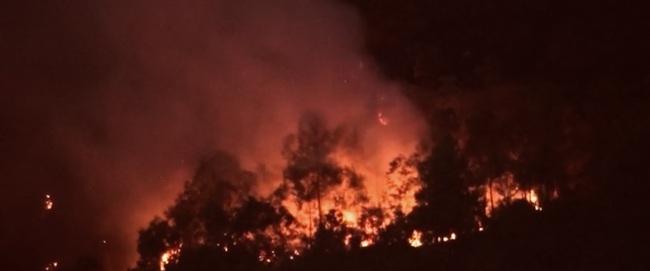 Cháy rừng tại Hương Sơn (Hà Tĩnh) được khống chế thế nào? - Ảnh 1.