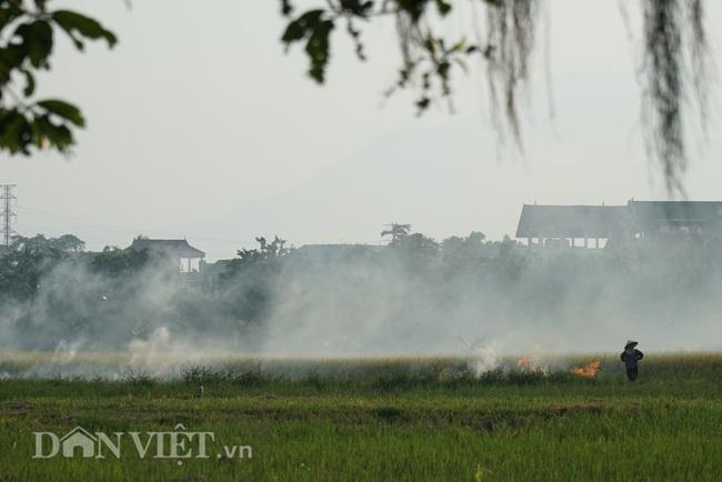 Khói trắng mù mịt bủa vây khu dân cư do người dân đốt rơm  - Ảnh 12.