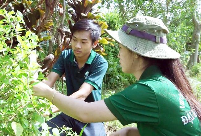 Chàng sinh viên xây dựng hệ thống tra cứu cây thuốc nam thông qua mã code - Ảnh 3.