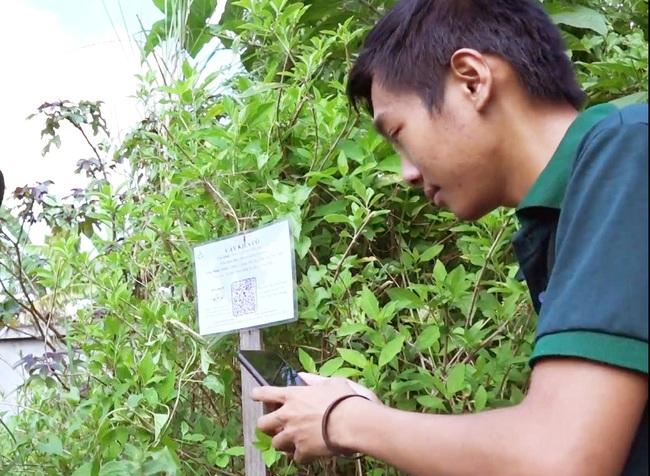 Chàng sinh viên xây dựng hệ thống tra cứu cây thuốc nam thông qua mã code - Ảnh 5.