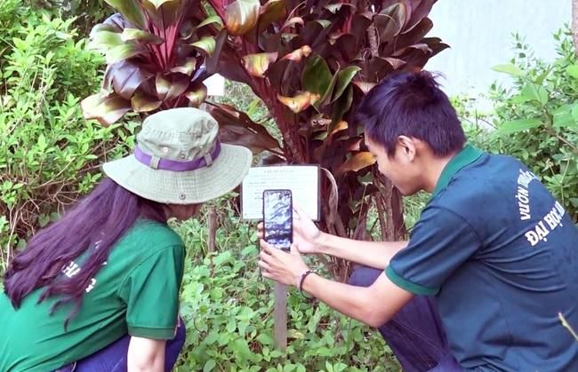 Chàng sinh viên xây dựng hệ thống tra cứu cây thuốc nam thông qua mã code - Ảnh 8.