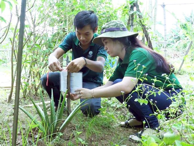 Chàng sinh viên xây dựng hệ thống tra cứu cây thuốc nam thông qua mã code - Ảnh 9.