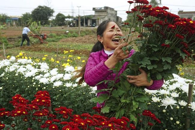 Giúp nhau làm giàu từ những vườn hoa cảnh - Ảnh 1.