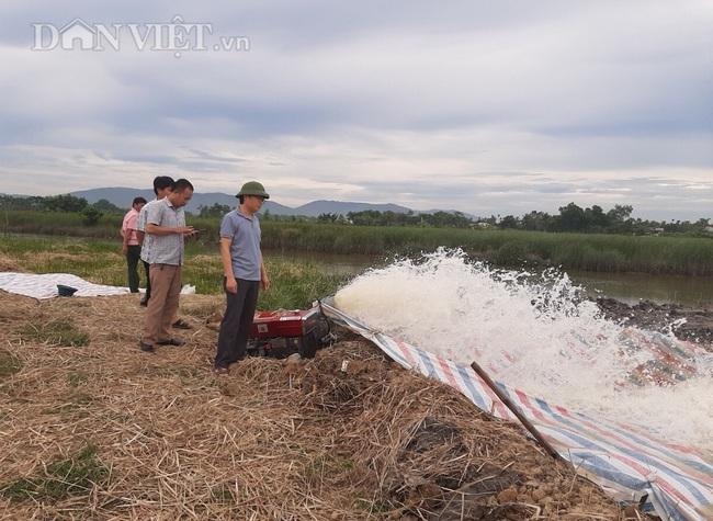 Thanh Hóa: Huy động hàng trăm máy bơm dầu dã chiến để cứu cây lúa - Ảnh 3.