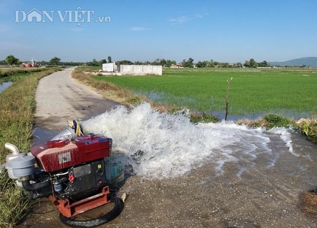 Thanh Hóa: Huy động hàng trăm máy bơm dầu dã chiến để cứu cây lúa - Ảnh 7.