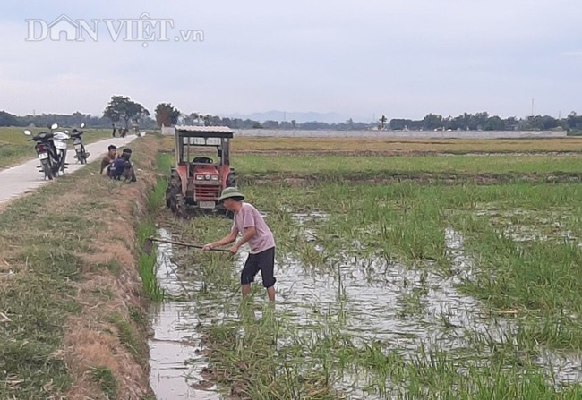 Thanh Hóa: Huy động hàng trăm máy bơm dầu dã chiến để cứu cây lúa - Ảnh 2.