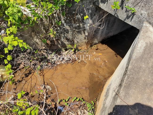 Quảng Trị: Nguy cơ ô nhiễm sông Vĩnh Phước từ nước thải KCN Nam Đông Hà và bệnh viện - Ảnh 2.