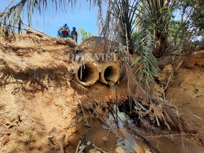 Quảng Trị: Nguy cơ ô nhiễm sông Vĩnh Phước từ nước thải KCN Nam Đông Hà và bệnh viện - Ảnh 4.
