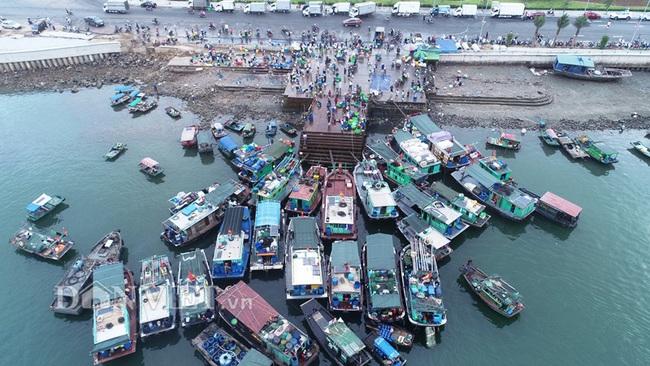 Đi săn hải sản tươi rói ở cảng cá Hạ Long lúc tinh mơ - Ảnh 1.