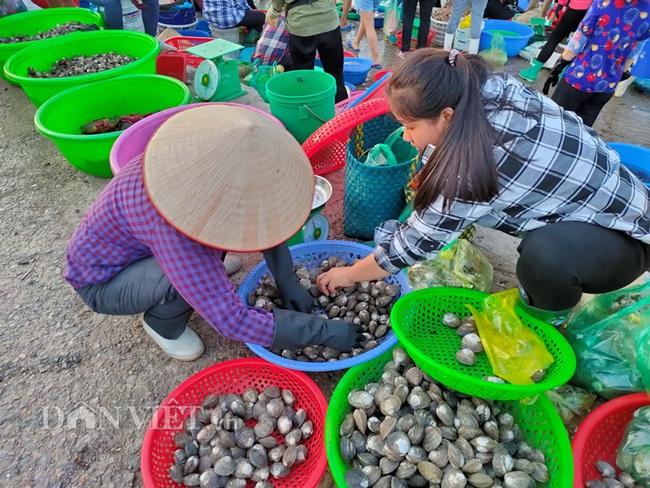 Đi săn hải sản tươi rói ở cảng cá Hạ Long lúc tinh mơ - Ảnh 4.