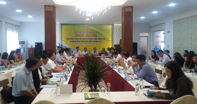 Phó Chủ tịch BCH T.Ư Hội NDVN: Nâng cao chất lượng các phong trào thi đua trong nông dân - Ảnh 2.
