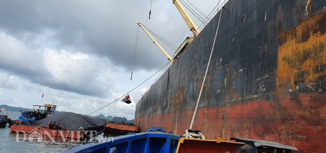 XNK qua cảng biển ở Quảng Ninh đang dần mờ nhạt - Ảnh 2.